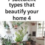 2 Best Popular Decorate Planters ideas#decorate #ideas #planters #popular#decora...
