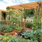 ✔45 Best Backyard Vegetable Garden Designs Ideas #BackyardVegetableGardenDesignsIdeas