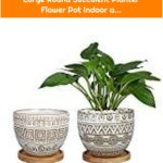 5.5in Geometry Ceramic Planter Large Round Succulent Planter Flower Pot Indoor a...