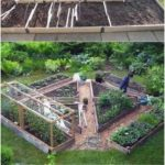 Raised Bed - - #Bed #cottagegardenideas #diygardenvegetable #diysmallgardenide...