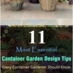 #Container #Container Vegetable Gardening Pots #Design #Essential #Garden -