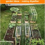 Creative indoor and outdoor juicy garden ideas - making diyselber