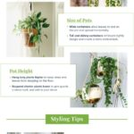 16 Indoor Hanging Plants to Decorate Your Home | ProFlowers#decorate #hanging #h...