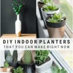 All of My Indoor Planter DIYs to Help You Decorate With Plants