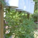 12 Backyard Vegetable Garden Ideas most of the creative as-well as Beautiful too...