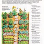 Kitchen Garden Designs, Plans + Layouts [year]