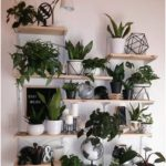 large houseplants, plant wall, wall decor, DIY plant decor wall, living room decor, interior decoration. - Furnishing ideas