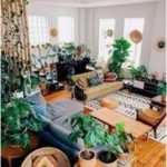 Beautiful Ways To Decorate Indoor Plant in Living#Skincare #Skin #ClearSkin #Ant...