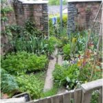 34 Beginner's Guide to a Productive Vegetable Garden