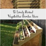 15 Lovely Raised Vegetables Garden Ideas - Matchness.com #gardenbedsLayers #gard...