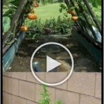 Flower and vegetable garden design #gardendesign #seo #gardens. vegetable garden...