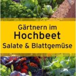 High pressure area that vegetable patch cultivating vegetables gardening in raised beds We ...