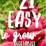 Vegetable gardening doesn't have to be difficult! This great post lists 21 veget..., #BestGa...