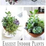 112+ impressive planter diy ideas to decorate your walls with nature 16 | terinf...