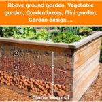 Above ground garden, Vegetable garden, Garden boxes, Mini garden, Garden design,...