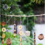 Build a bird feeder yourself and what you need to consider