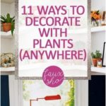 11 Ways to Decorate With Plants (ANYWHERE) -
