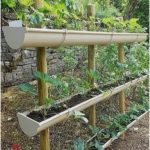 #GardeningforBeginners #vegetablegarden Small Vegetables Garden for Beginners_3...