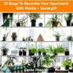 10 Ways To Decorate Your Apartment With Plants - Society19