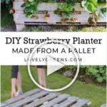 How to Make a Better Strawberry Pallet Planter | Vegetable garden design, Pallet...