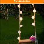 Blossom & Brogues Flower Lights from Apollo Box