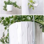 most current images hanging plants indoor ceilings tips funny