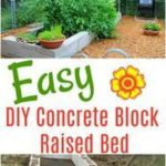 DIY Raised Bed Using Concret Blocks - Vegetable Gardening DIY Concrete Block Ra...