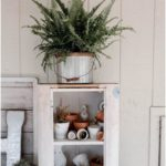 Watering and Decorating with Ferns - indoor plant decor and care To decorate ...