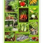 Garden ideas # Vegetable garden - Vegetable garden design - #Garden #Garden ...,...
