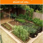Vegetable garden design Do you think that your vegetable garden should not only...