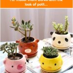 Astounding 8 Cute Pots Design Ideas For Indoor Plant Bored with the look of pott...