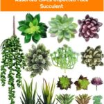 Artificial Fake Succulent Plants Assorted 15Pcs Unpotted Face Succulent