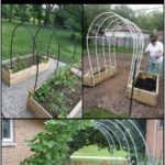 Next Post Previous Post This Hoop Trellis DIY project is simple, inexpensive ...